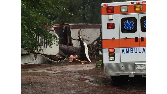 Tree falls into home in Williston