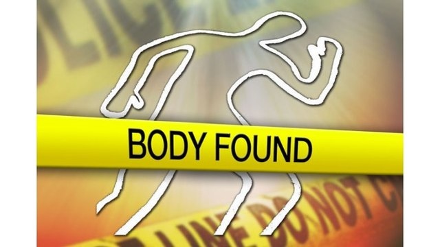 One set of human remains found in McCormick County identified