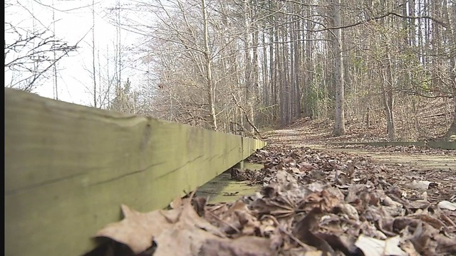 New nature trail coming to South Augusta