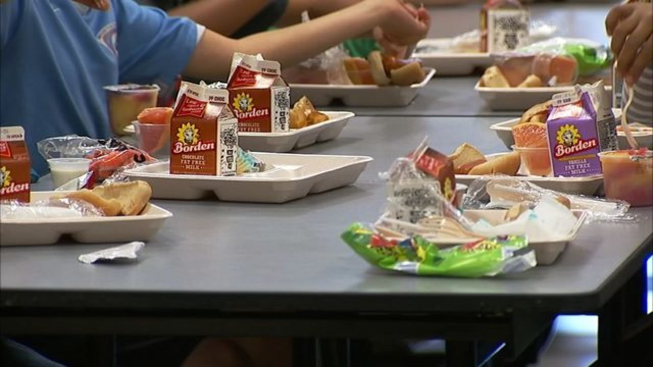Doctors say food allergies may lead to bullying for some for Chair network golf